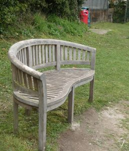 Benches: Fiona Cheney