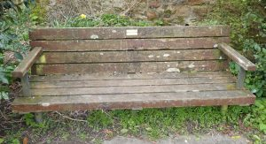 Benches: Diane Walshe