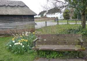 Benches: Pond