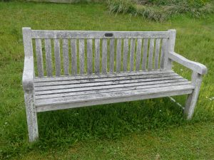 Benches: Betty Brown